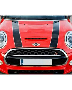 Black with white pinstripe left hand MINI bonnet stripe